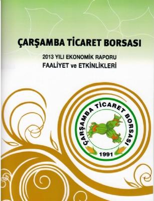2013 Yılı Ekonomik Raporu Faaliyet ve Etkinlikleri